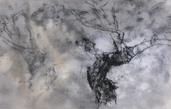 "TREE DRAWING, #19 / 26"" x 39"" / charcoal, pencil, enamel/paper - Eric ..."